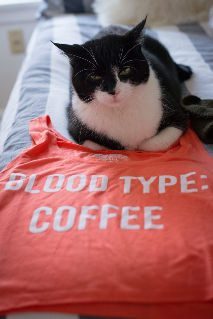 a black and white tuxedo cat lays on an alpha brew blood type: coffee shirt, photographed by jamie bannon photography.