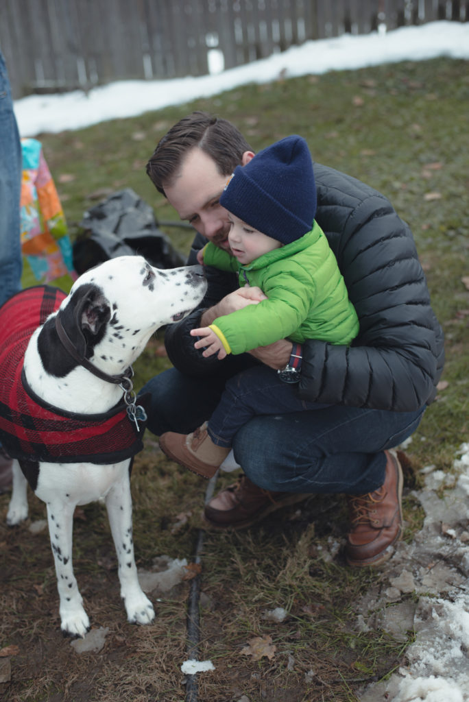 a baby pets a dalmatian dog outside during winter in bethel, connecticut, photographed by jamie bannon photography.