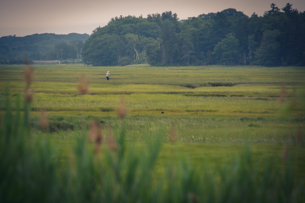 landscape with a man walking through a large field in scarborough, maine, photographed by jamie bannon photography.