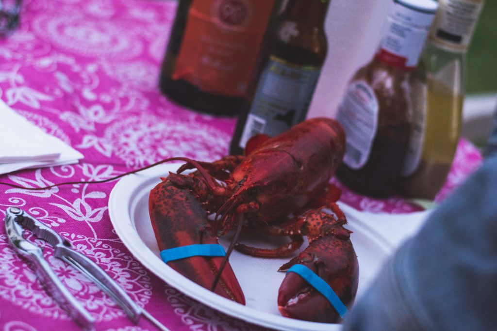a lobster feast is served outdoors in niantic, connecticut, photographed by jamie bannon photography.