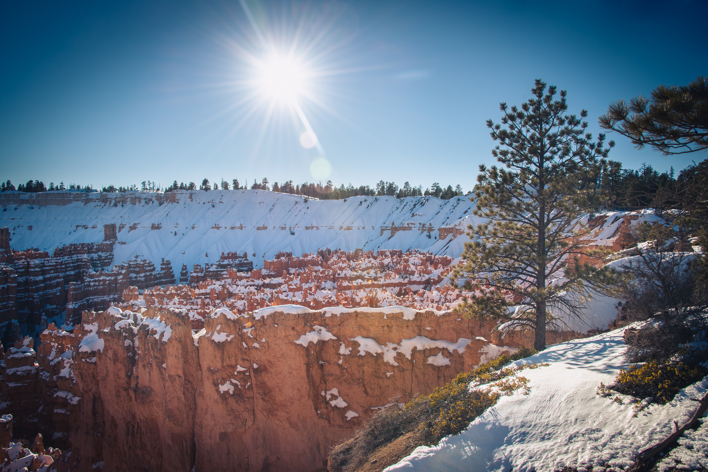 landscape photo of bryce canyon, utah, photographed by jamie bannon photography.