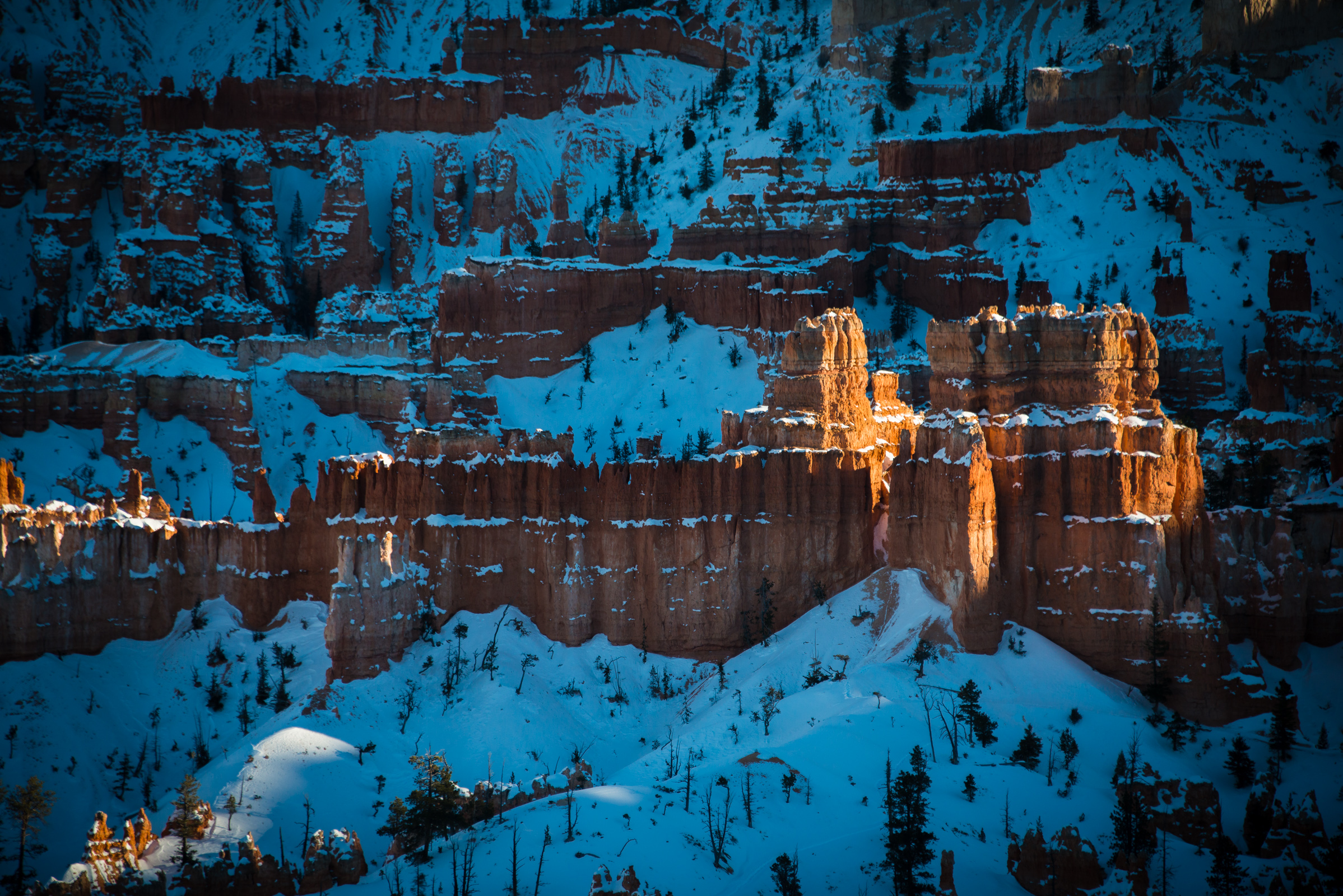 detail of hoodoos at bryce canyon, utah, photographed by jamie bannon photography.