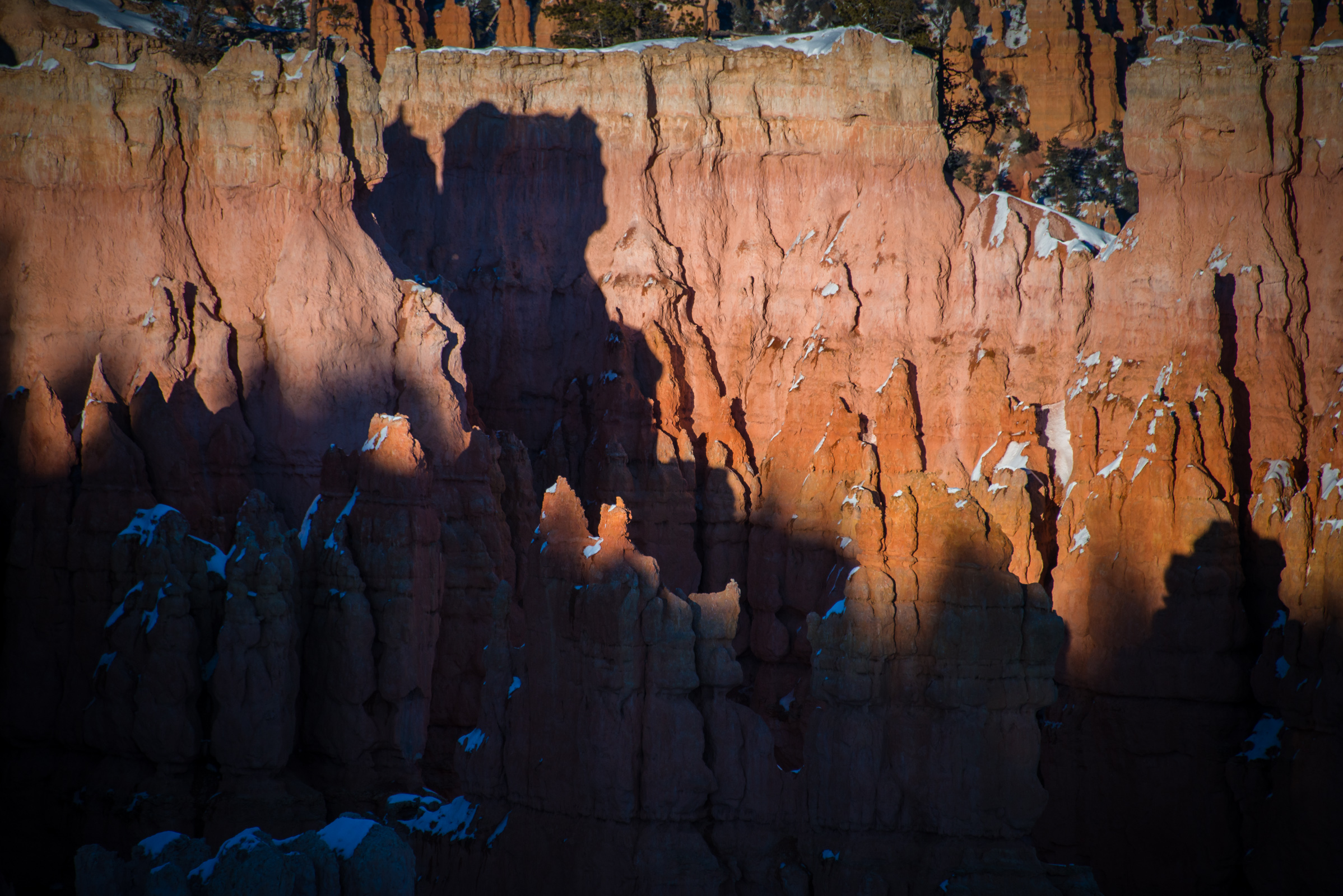 detail of hoodoos at sunset at bryce canyon, utah, photographed by jamie bannon photography.